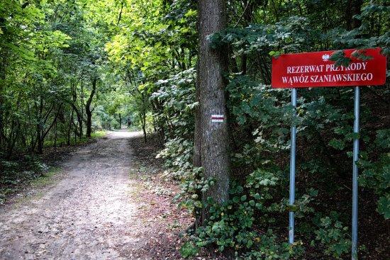 Nature Reserve Szaniawski Gorge