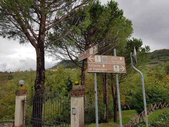 Fattoria Maionchi: Look for this road sign