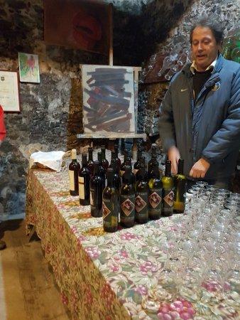 Fattoria Maionchi: Wine tasting selection