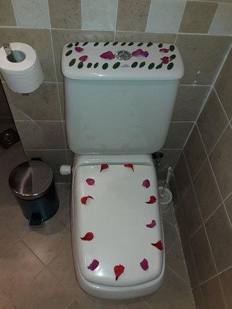 Bathroom - Picture of Malikia Resort Abu Dabbab, Marsa Alam - Tripadvisor