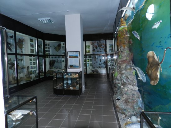 Museum of History and Nature of Karadag