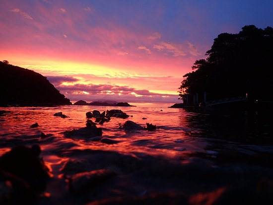 Port Fitzroy, New Zealand: Orama Oasis