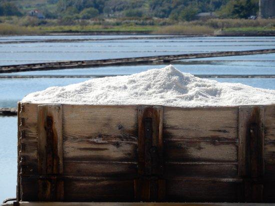 Ston Salt Works: Salt on carriage and views of salt ponds.