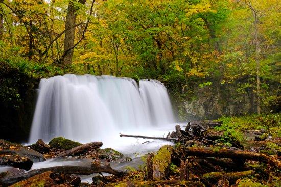 Aomori Prefecture, Japonia: oirase stream 銚子大滝