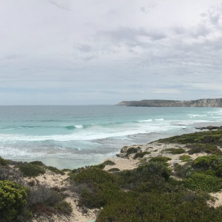 Kingscote, Australia: photo3.jpg