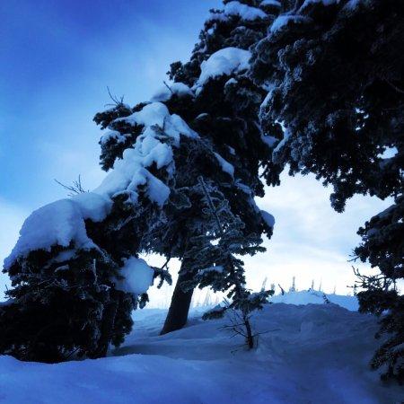 Голден, Канада: photo0.jpg