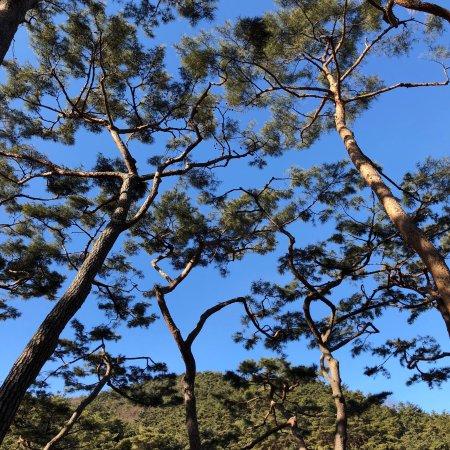 Asan, Etelä-Korea: photo0.jpg
