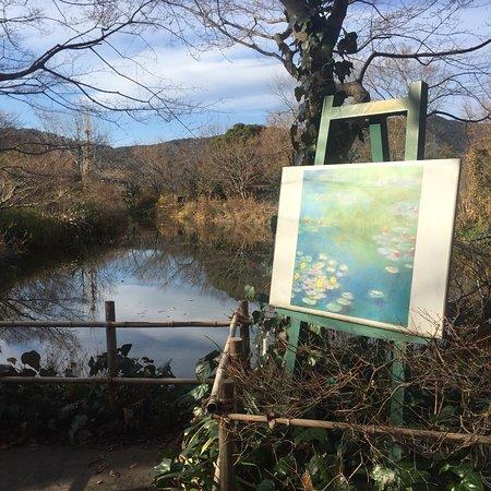 北川村 莫內的花園 - 旅遊景點評論 - TripAdvisor