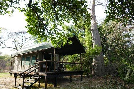 Xaro Lodge: Zelt Nr. 8