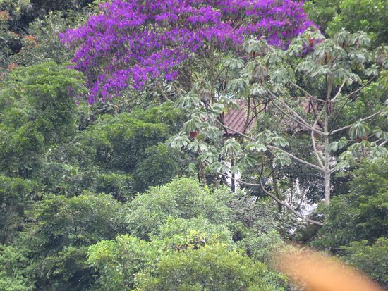 Pousada Infinito: Vista chalé Patagônia