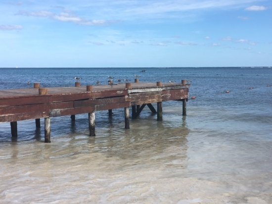 Ocean Maya Royale Photo