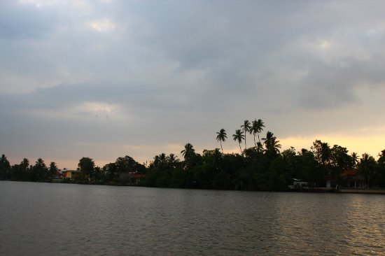 The Waterside Bentota : River View