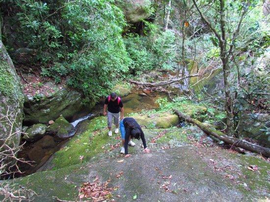 Serra, ES: Subida ao Monte Mestre Alvaro