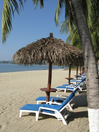 維斯塔巴亞爾塔港海灘套房飯店照片