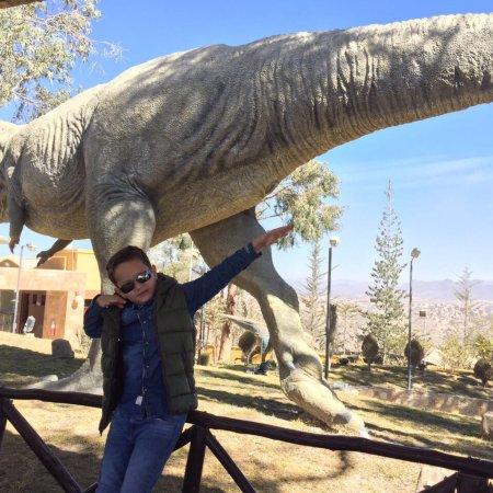 Dinosaur Tracks (Cal Orck'o): photo1.jpg