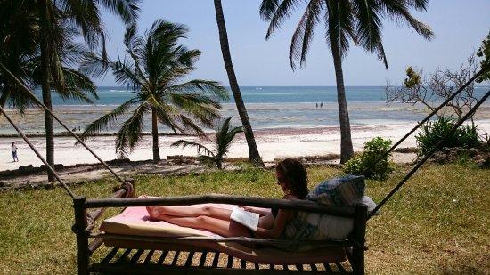 Kaskazi Beach Hotel : DSC_0229_large.jpg