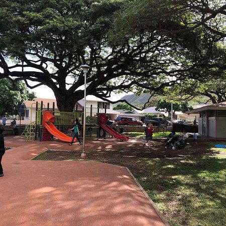 Paki Playground