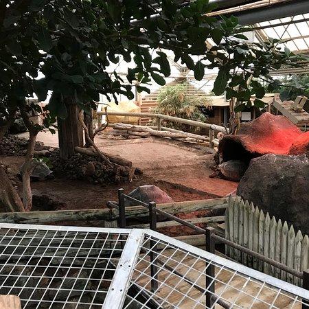La Ferme aux Crocodiles : photo0.jpg