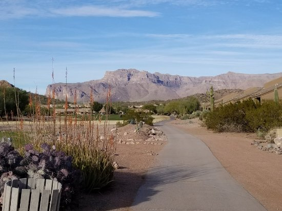 Gold Canyon Resort - Sidewinder Golf Course: 20180102_152805_large.jpg