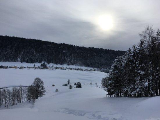 Bois d'Amont, France: Paysage autour de l'hôtel