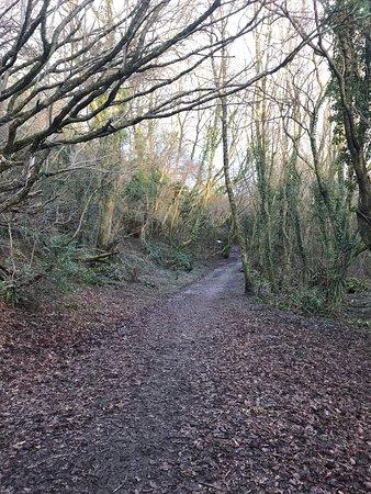 Pencoed, UK: photo1.jpg