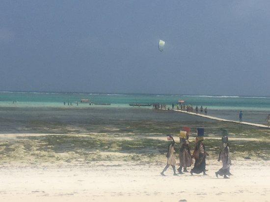 Karafuu Beach Resort Tripadvisor