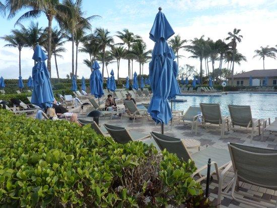 Marriott S Ocean Pointe Kuva Marriott S Ocean Pointe Palm Beach Shores Tripadvisor