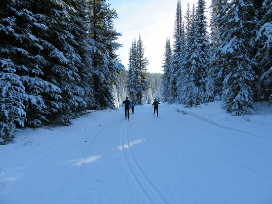 Vernon, Kanada: Another sample of the wonderful trails at Sovereign