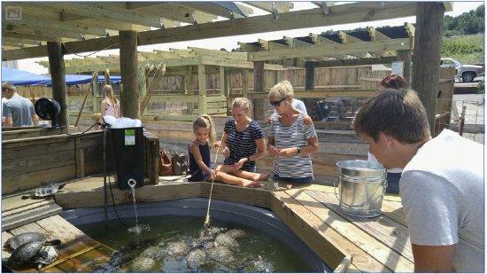 Medicine Park Aquarium And Natural Sciences Center Lawton