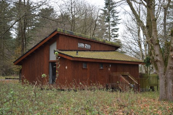 Thetford Forest Park: Bigger Cabin
