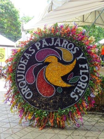 Jardin Botanico de Medellin照片