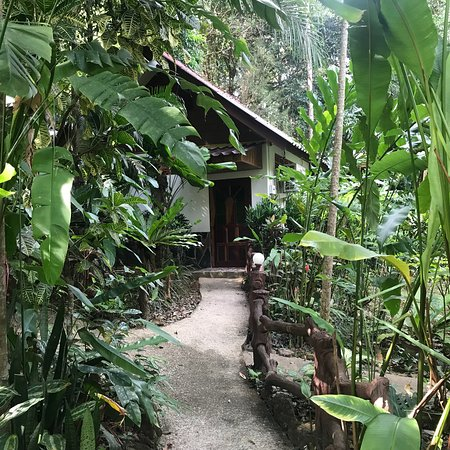 Khao Sok Las Orquideas Resort: photo7.jpg