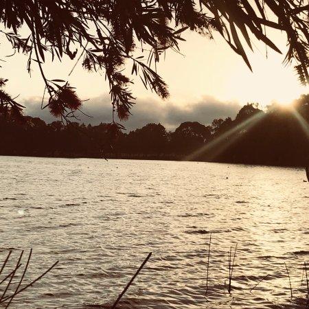 Leederville, Australia: photo9.jpg