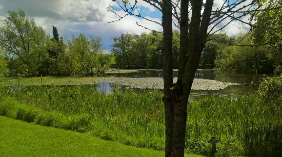 Stephenstown Pond Nature Park