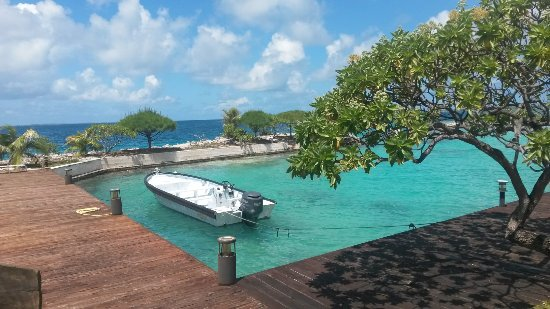 Manihi, Fransk Polynesia: 20171103_125154_large.jpg