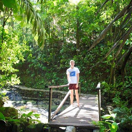 Termales del Bosque: photo3.jpg