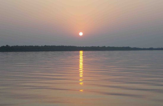 Sundarban Sun Setting