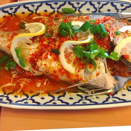 Zap Thai Restaurant Auckland