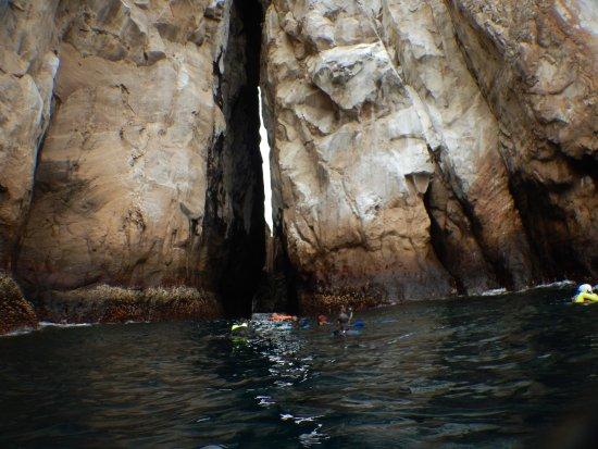 Puerto Baquerizo Moreno, Ecuador: snorkel