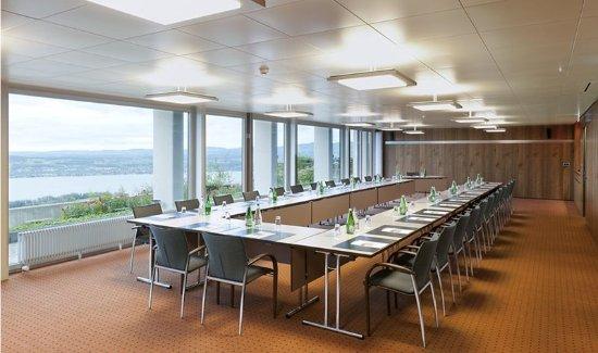 Feusisberg, Switzerland: Meeting room