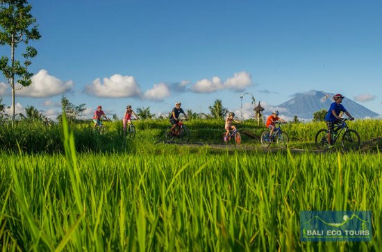 Bali Eco & Tour cycliste éducatif