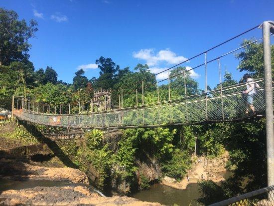 Mena Creek, Australia: Suspension bridge