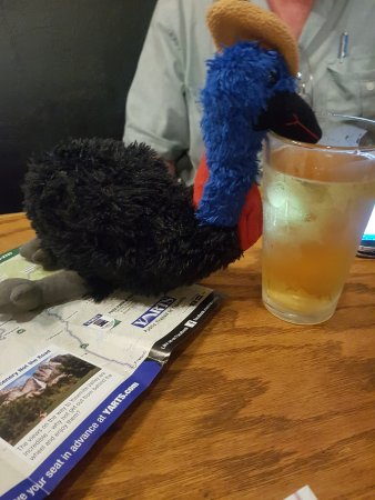 Iron Door Saloon and Grill: Cassie the Cassowary enjoyed a drink too