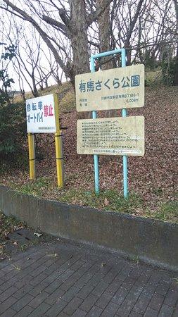 Arima Sakura Park