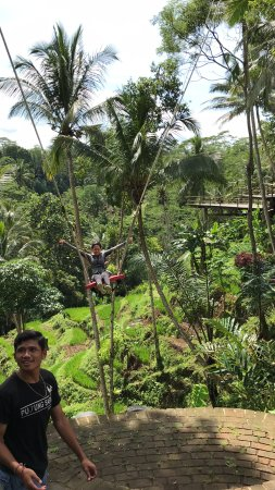 Go Ebike Bali: Amazing