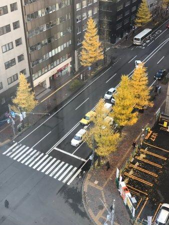 Richmond Hotel Sapporo Ekimae : 還有黃葉