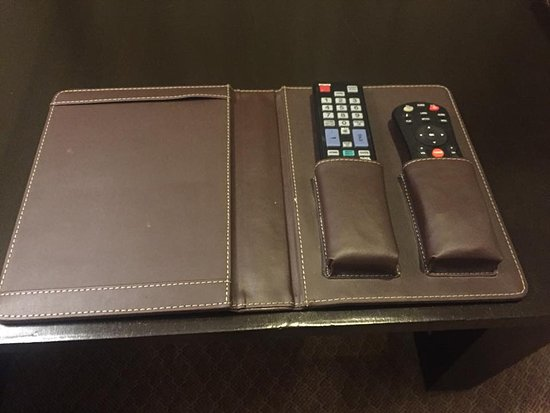 Ramada Plaza JHV Varanasi: I thought this was cool. Although it took me a while to actually find the remote controls. :)