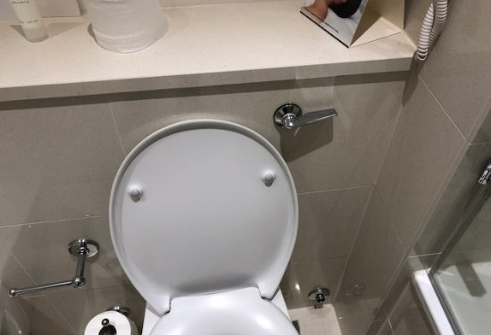 The Lowry Hotel: Manual lever flush & non slow closing seat - hardly 5 star