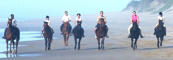 Marina Beach, South Africa: Group beach ride