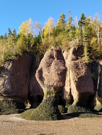 the many faces of the rocks, bottom of the ocean floor Hopewell Rocks, NB